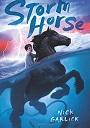 Storm Horse.jpg