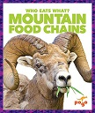 Montain Food Chains JUMP.jpg
