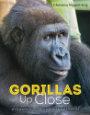 Gorillas Up Close