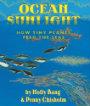Ocean Sunlight How Tiny Plants Feed the Seas